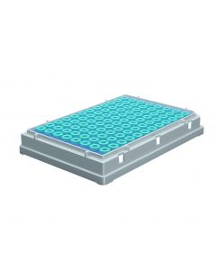 96 microTUBE Plate